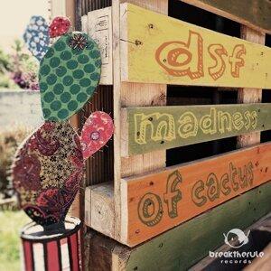 Madness of Cactus