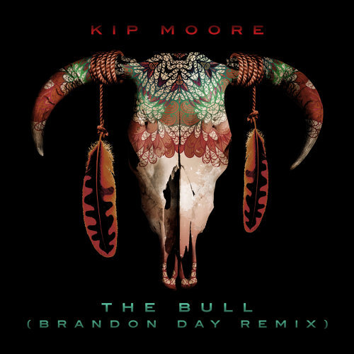 The Bull - Brandon Day Remix