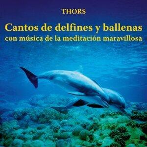 Cantos de Delfines y Ballenas Con Música de la Meditación Maravillosa