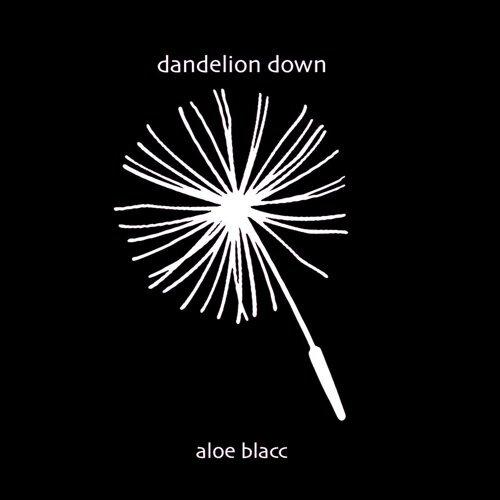 Dandelion Down