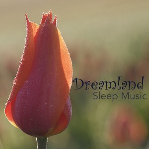 Dreamland Sleep Music - Calming Sleeping Songs and Relaxing Melodies and Lullabies to Sleep to