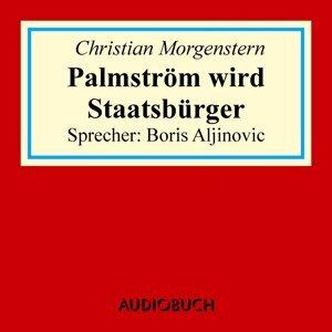 Palmström wird Staatsbürger