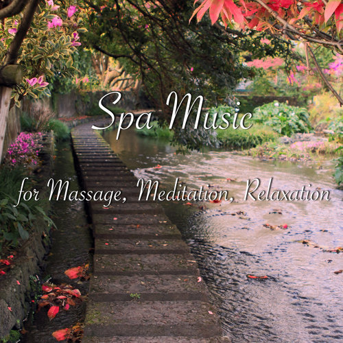 Relaxing Violin and Drone Meditation-Zen Meditation Garden-KKBOX