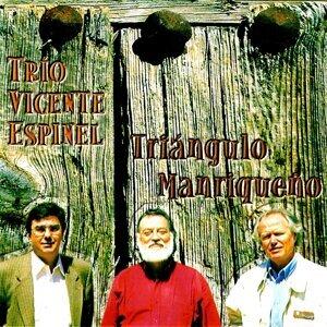 Triángulo Manriqueño