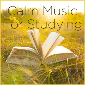 Calm Music for Studying and Focus Music