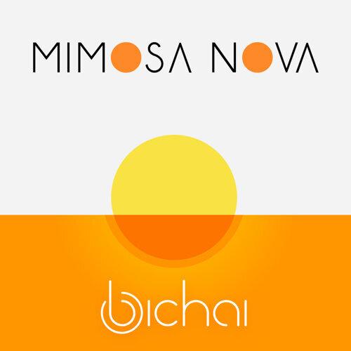 Mimosa Nova