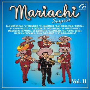 Mariachi, Vol. 2