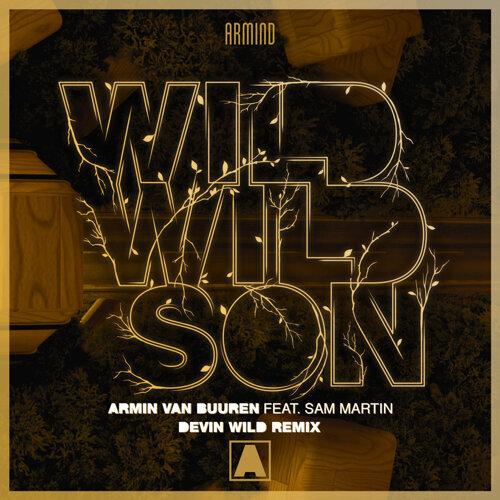 Wild Wild Son - Devin Wild Remix