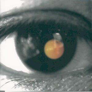 黑色柳丁 (Black Tangerine)