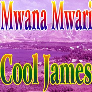 Mwana Mwari