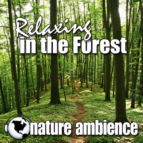 Nature Ambience - Relaxing in the Forest (Nature Sounds) - KKBOX