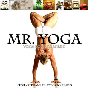 Yoga Lounge Music Vol.2