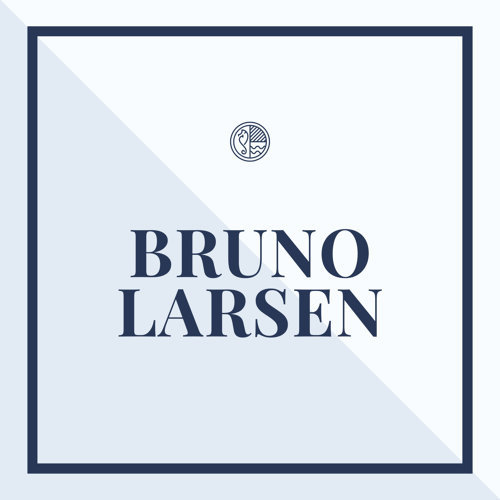 Bruno Larsen
