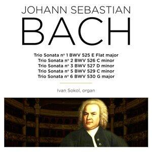 Bach: Trio Sonata, BWV 525 - 530
