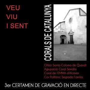 Veu, Viu i Sent 2014 (3a edició)