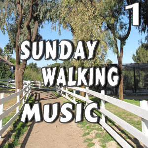 Sunday Walking Music, Vol. 1 (Instrumental)