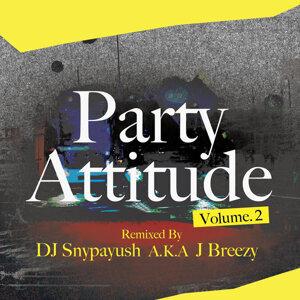 Party Attitude Vol.2