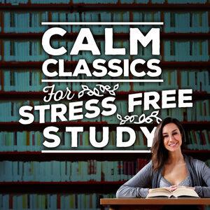 Calm Classics for Stress-Free Study