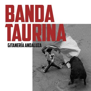 Gitanería Andaluza