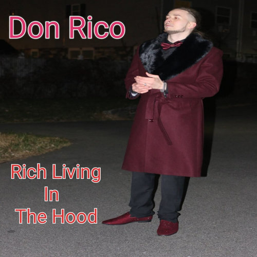 Rich Living in the Hood