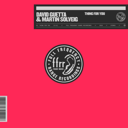 Thing For You (With Martin Solveig)
