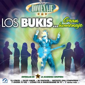 Serie Homenaje: Los Bukis… Gran Homenaje