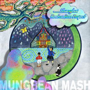 Mungbean Mash