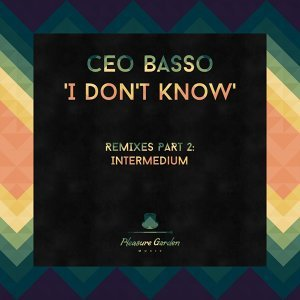 I Don't Know (Remixes, Pt. 2)