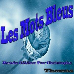 Les mots bleus - Rendu célèbre par Christophe