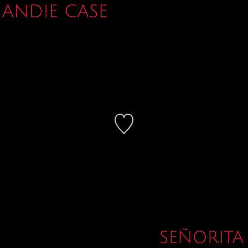 Señorita - Acoustic