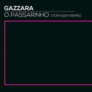 O Passarinho - Tom Novy Remix