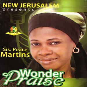 Wonder Praise