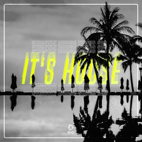 It's House - Strictly House, Vol. 28