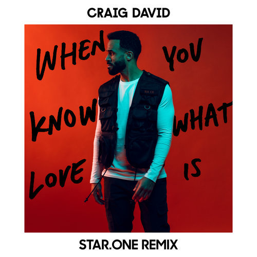 When You Know What Love Is - Star.One Remix