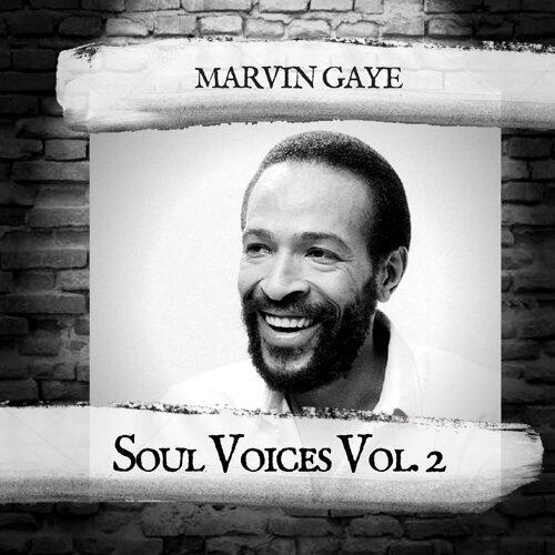Soul Voices Vol. 2
