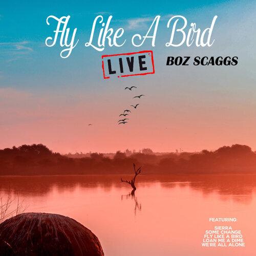Fly Like A Bird - Live