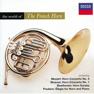 The World Of The French Horn