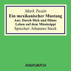 Ein mexikanischer Mustang. Aus: Durch Dick und Dünn: Leben auf dem Mississippi