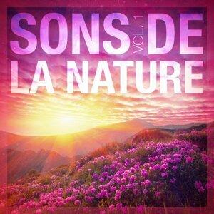 Sons de la nature, vol. 1