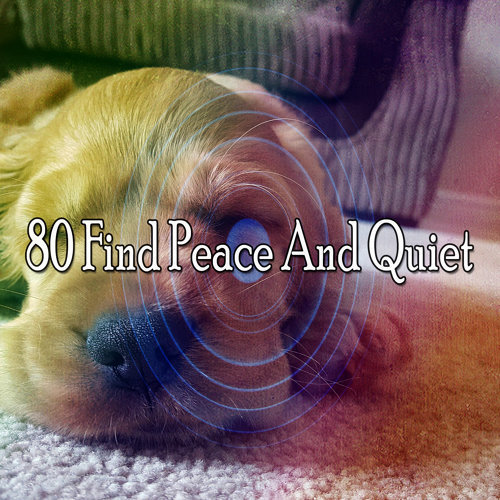80 Find Peace And Quiet
