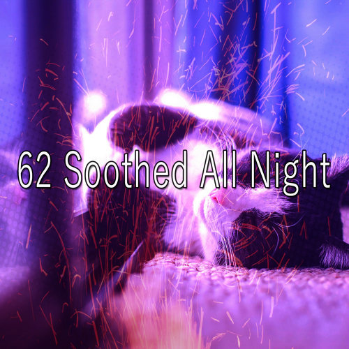 62 Soothed All Night