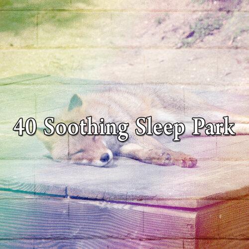 40 Soothing Sleep Park