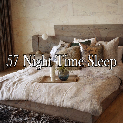 57 Night Time Sleep