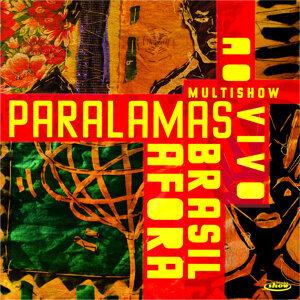 Multishow Ao Vivo Paralamas Brasil Afora - Live