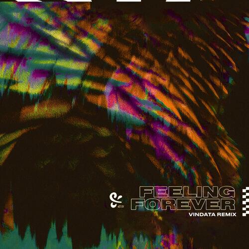 Feeling Forever - Vindata Remix