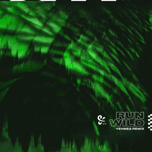 Run Wild - YehMe2 Remix