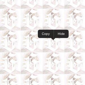 Copy | Hide