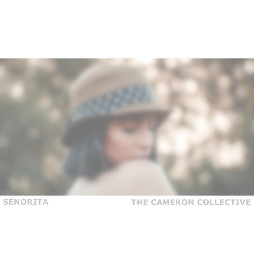 Señorita (Acoustic)