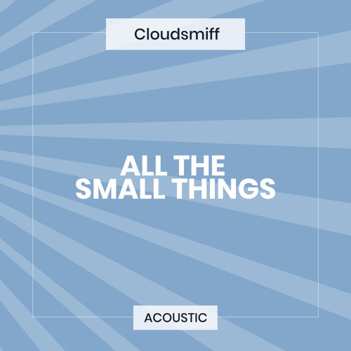 All the Small Things - Acoustic