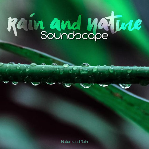 Nature and Rain - Relaxing Forest Sounds – Nature Music to Rest